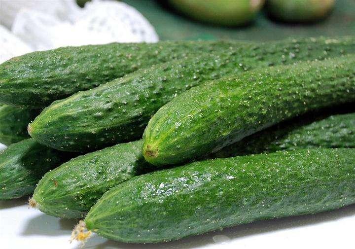 黄瓜为什么是绿色不是黄色?