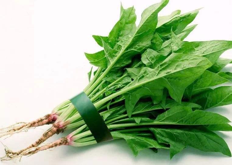 蔬菜界的营养冠军:蘑菇助补钾、菠菜叶酸高