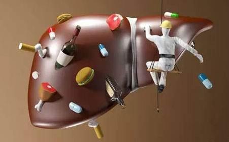 """吃肝补肝不等于能治肝病,""""三高""""人群最好少吃"""
