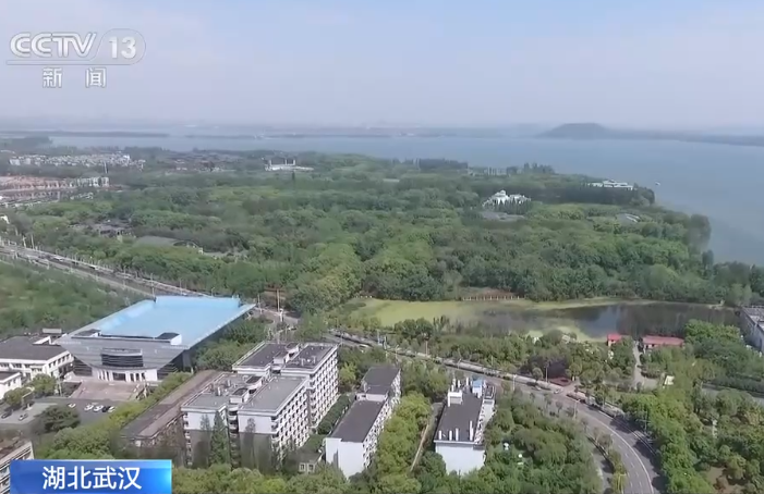 武汉城市圈同城化发展办公室正式挂牌 助推九个城市携手发展